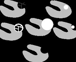 Bosniak 分類の画像